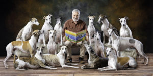 Fourteen whippets composite pet portrait regal red background storybook